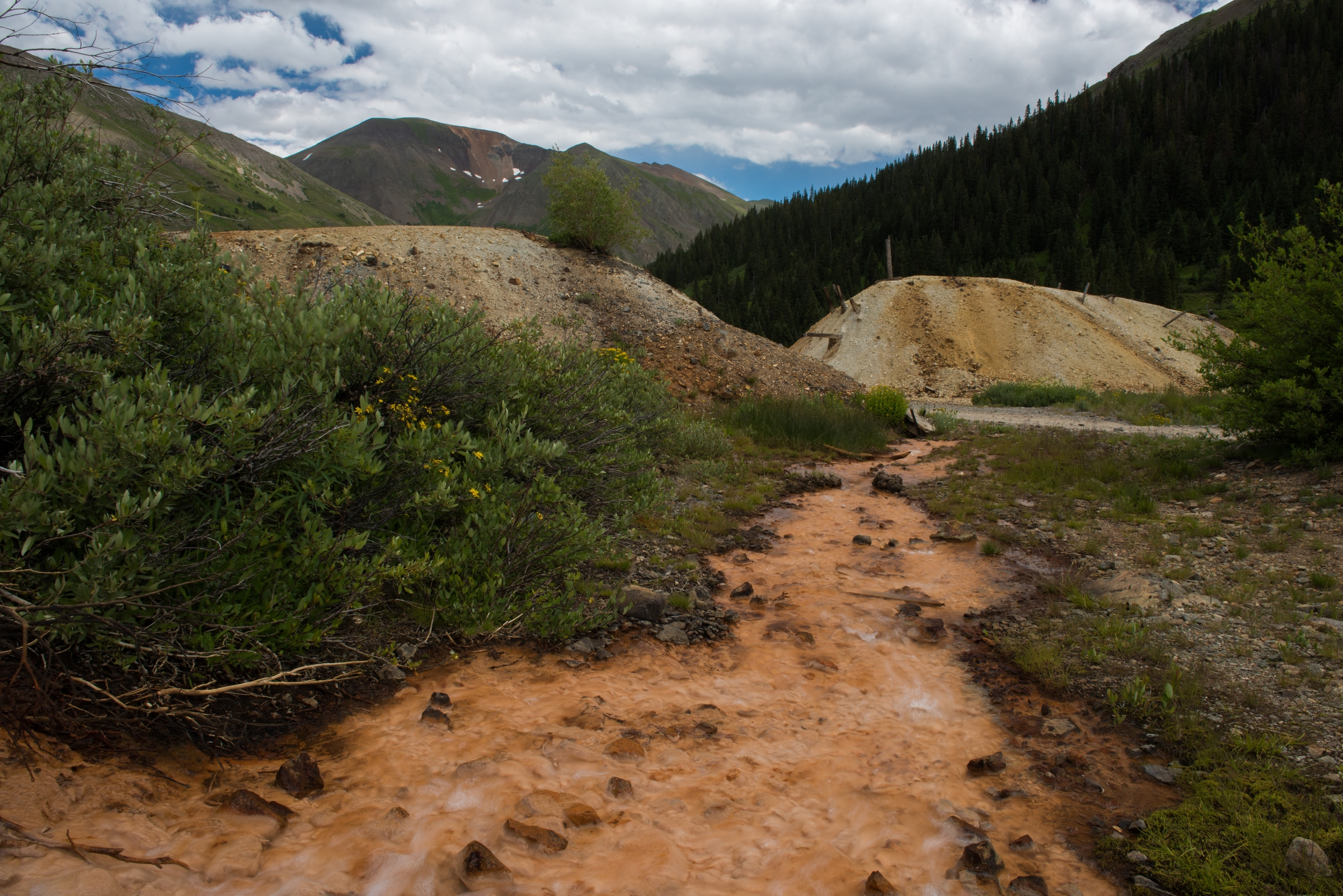 Mine Tailing and Contaminated Runoff
